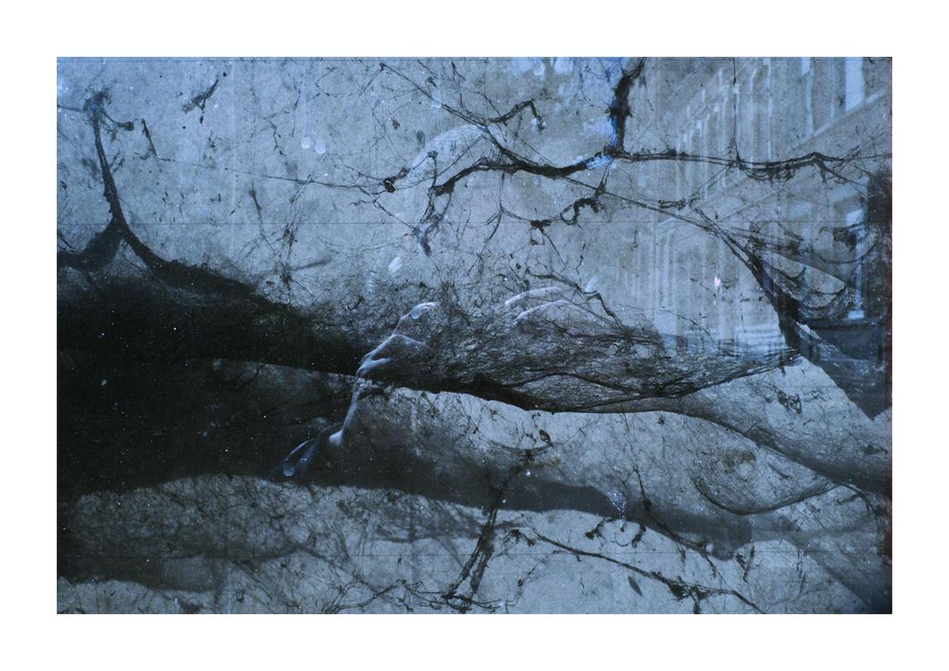 Cobwebs by crossfading