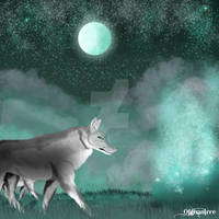 Nocturn Wolves