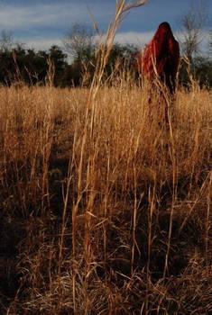 Field 02