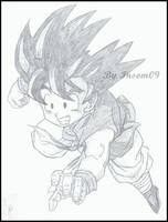 Son Goku by Insom09