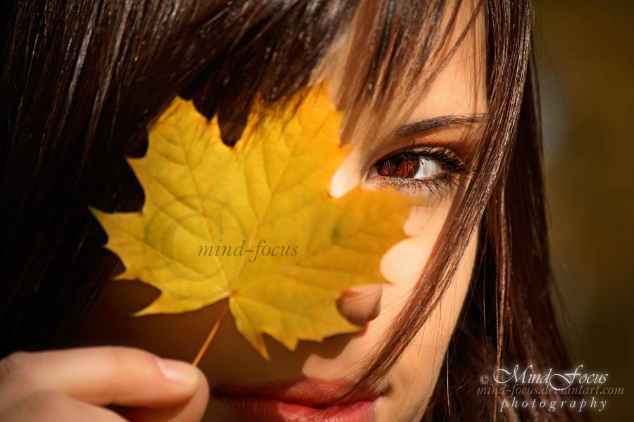 Autumn Colors. 03 by mind-focus