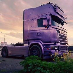 Purple power... by tntiseverywere