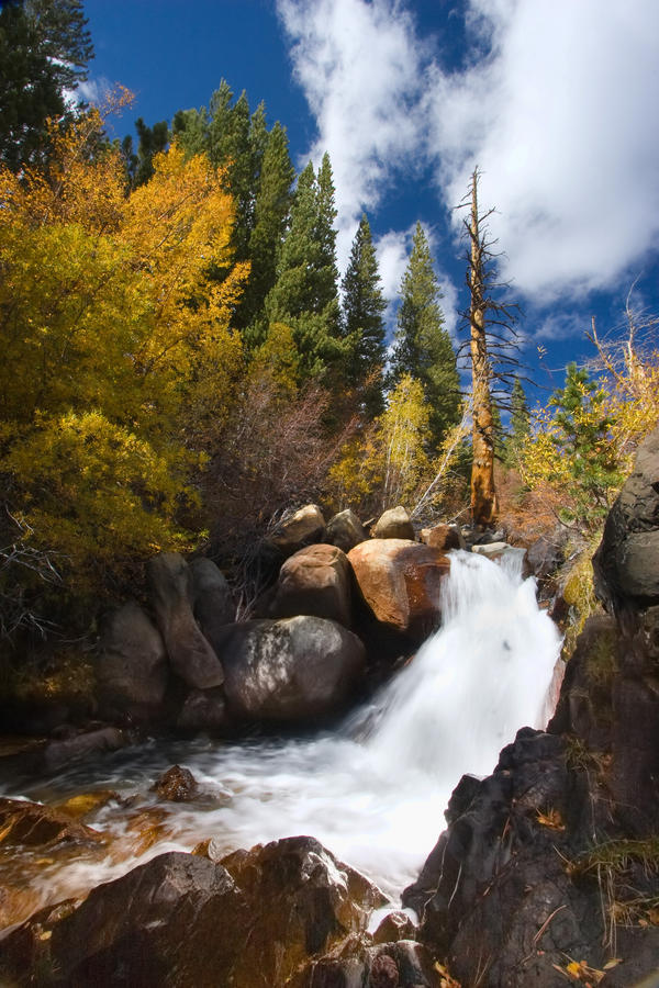 Creekside in the Sierras by CheshirePhotographer