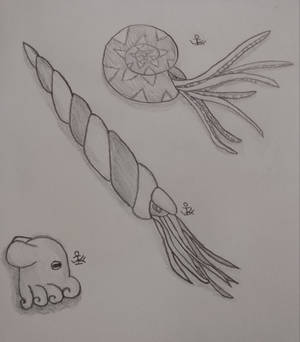 Just some sea critters