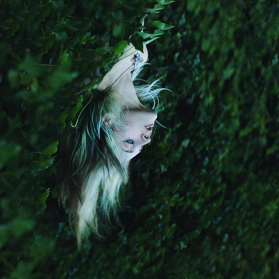 .emergence. by SmokyPixel