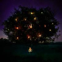 .the wishing tree.
