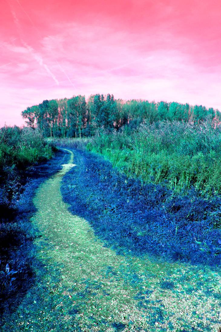 Autumn on acid by MisterMoka