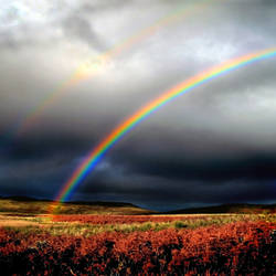 Grey Hill Moor: rainbow by Coigach