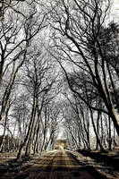Winter Road to Laurieston by Coigach