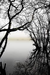 Mist: LochShore2 by Coigach
