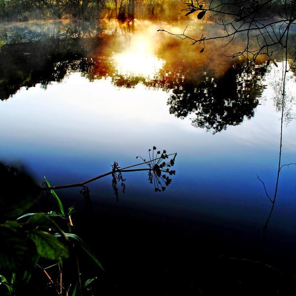 Gatehouse: Autumn Pond+Mist1 by Coigach