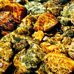 Brighouse Bay: water+sun+rocks by Coigach