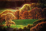 Fleet Valley: Autumn Fire by Coigach