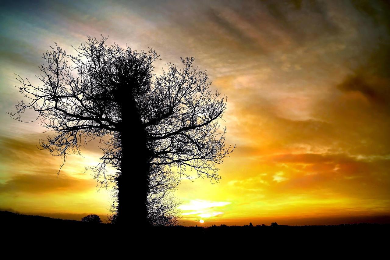 Norfolk Dawn by Coigach