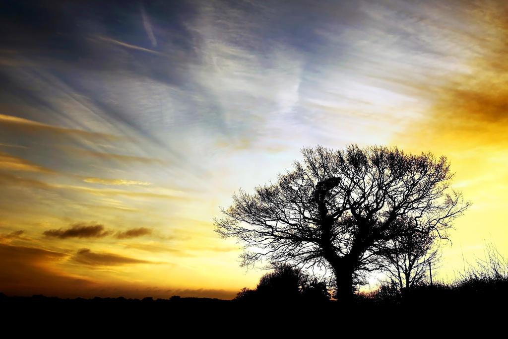 Norfolk Dawn Revisit by Coigach