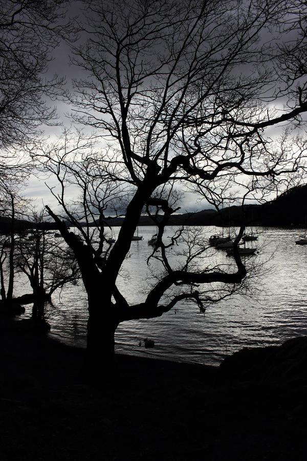Cumbrian Spring: Shoreline Silhouettes by Coigach