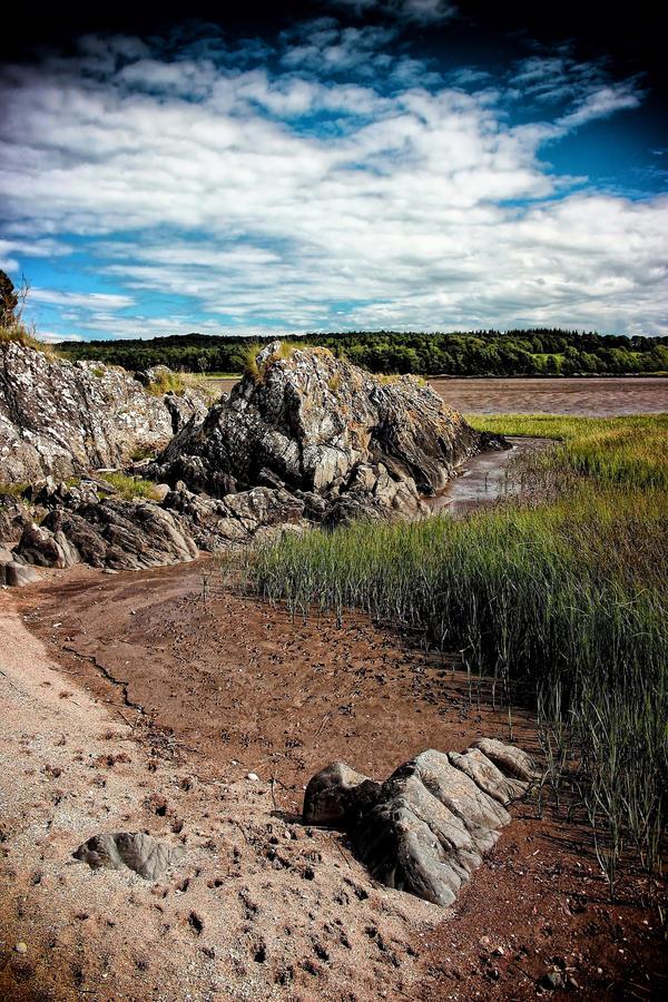 Skyreburn Bay: Salt Marshes by Coigach