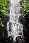 Eden Rainforest: Waterfall