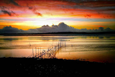 Sky Fire - Solway Firth
