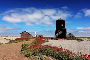 All The Pretty Flowers - Orford Ness by Coigach