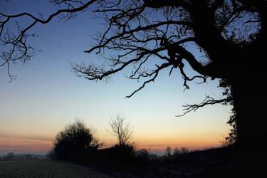 Dawn Frost 1 by Coigach