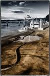 Kirkcudbright: Bi-colour Harbour by Coigach