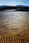 Mossyard: Low Tide by Coigach