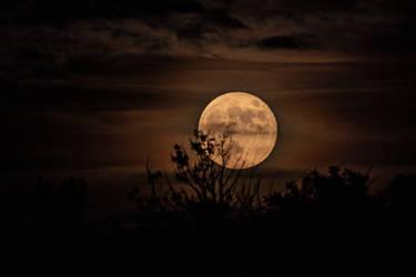 Strawberry Moon June 17, 2019