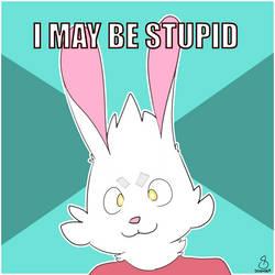 I May Be Stupid