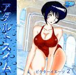 Adult Swim Vol 2 cover