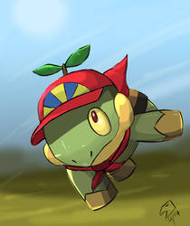 Franklin the turtwig