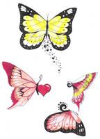 colourful butterfly's by crazyeyedbuffalo