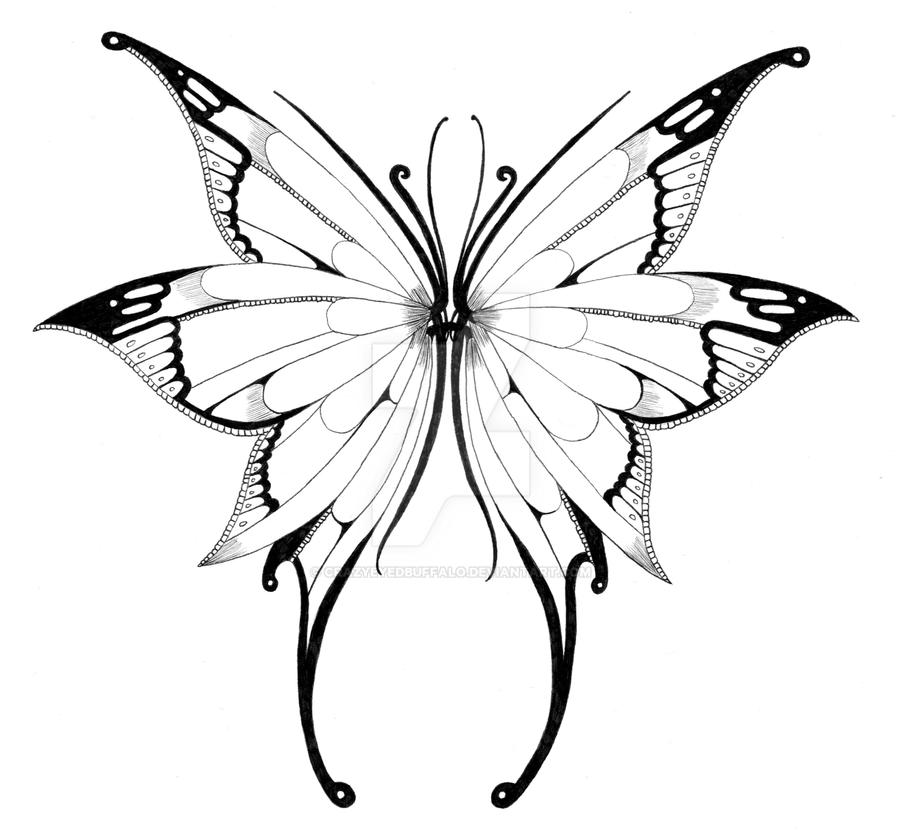Line Drawing Butterfly Tattoo : Butterfly wings by crazyeyedbuffalo on deviantart