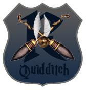 Quidditch Match by Alexthewolf123