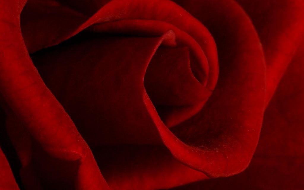Monochromatic Red II by webcruiser