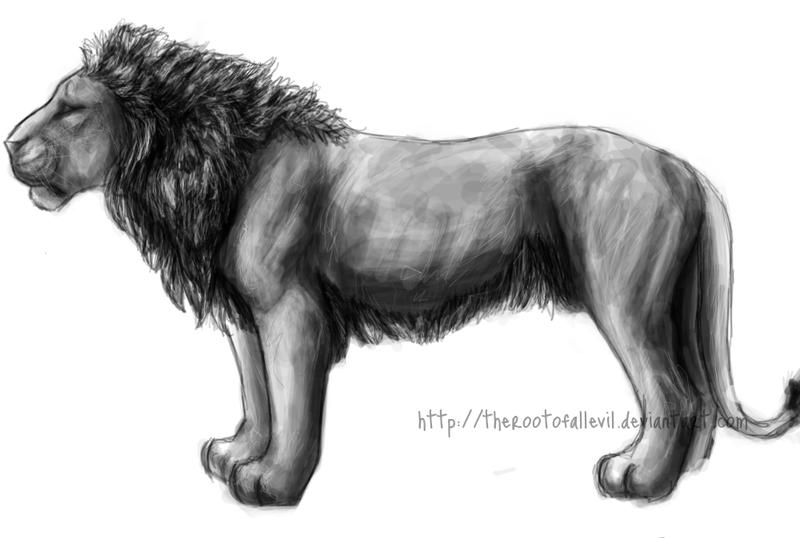 Greyscale Lion Profile Sketch by TheRootOfAllEvil