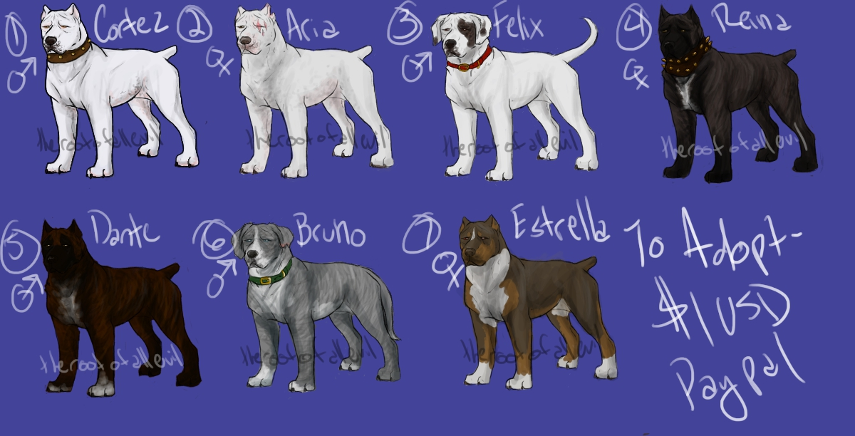 Dogo/Pit/Corso Type Dog Adoptables by TheRootOfAllEvil