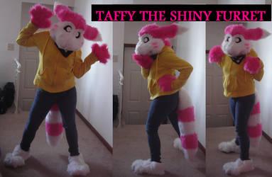 Taffy the Shiny Furret :3 by Xandeichan