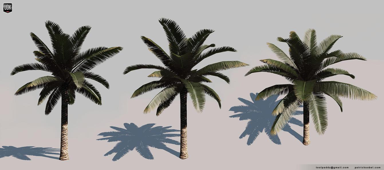 Palm Tree by Yakul