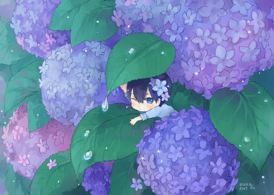 Chibi Haru by sawa-rint