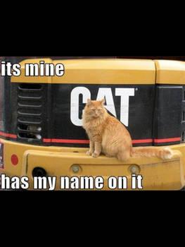 It's mine