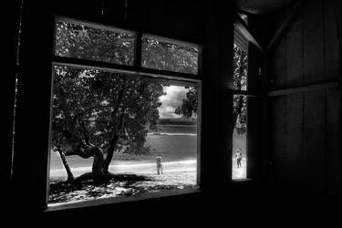 window witness