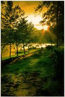 feel the light by jfarchaul