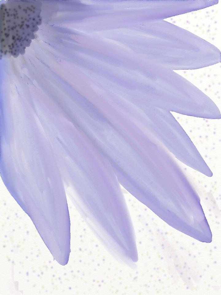 Purple by majykwolfe
