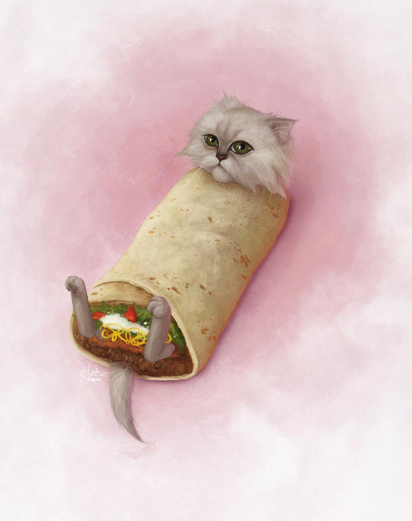 Cat Burrito By Schmoo15 On Deviantart