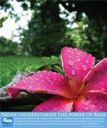 Rain by BionWolf