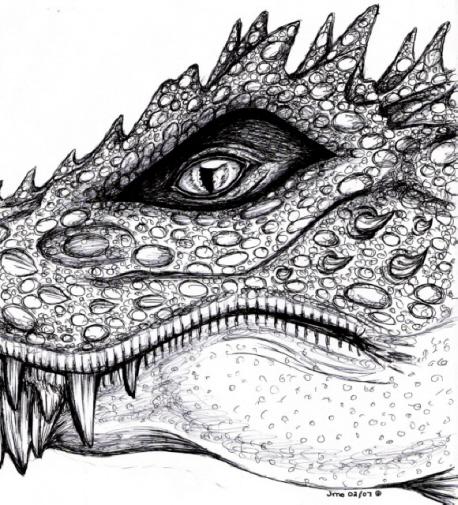 Dragons Eye by LoopGaroux
