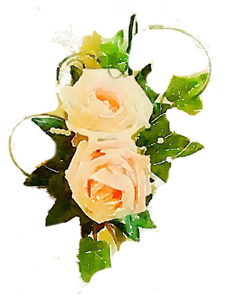 FREE-flower-rose-png-peach-vine-use-freely by anjelakbm on ...