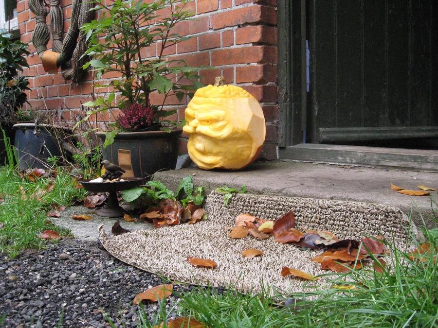 mr_pumpkin1__chef_de_mecanique_by_emir0-d31cdsk.jpg