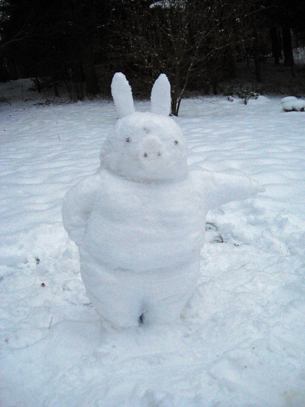 snowpig_1_by_emir0-d39aipy.png